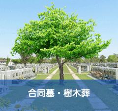 合同墓・樹木葬